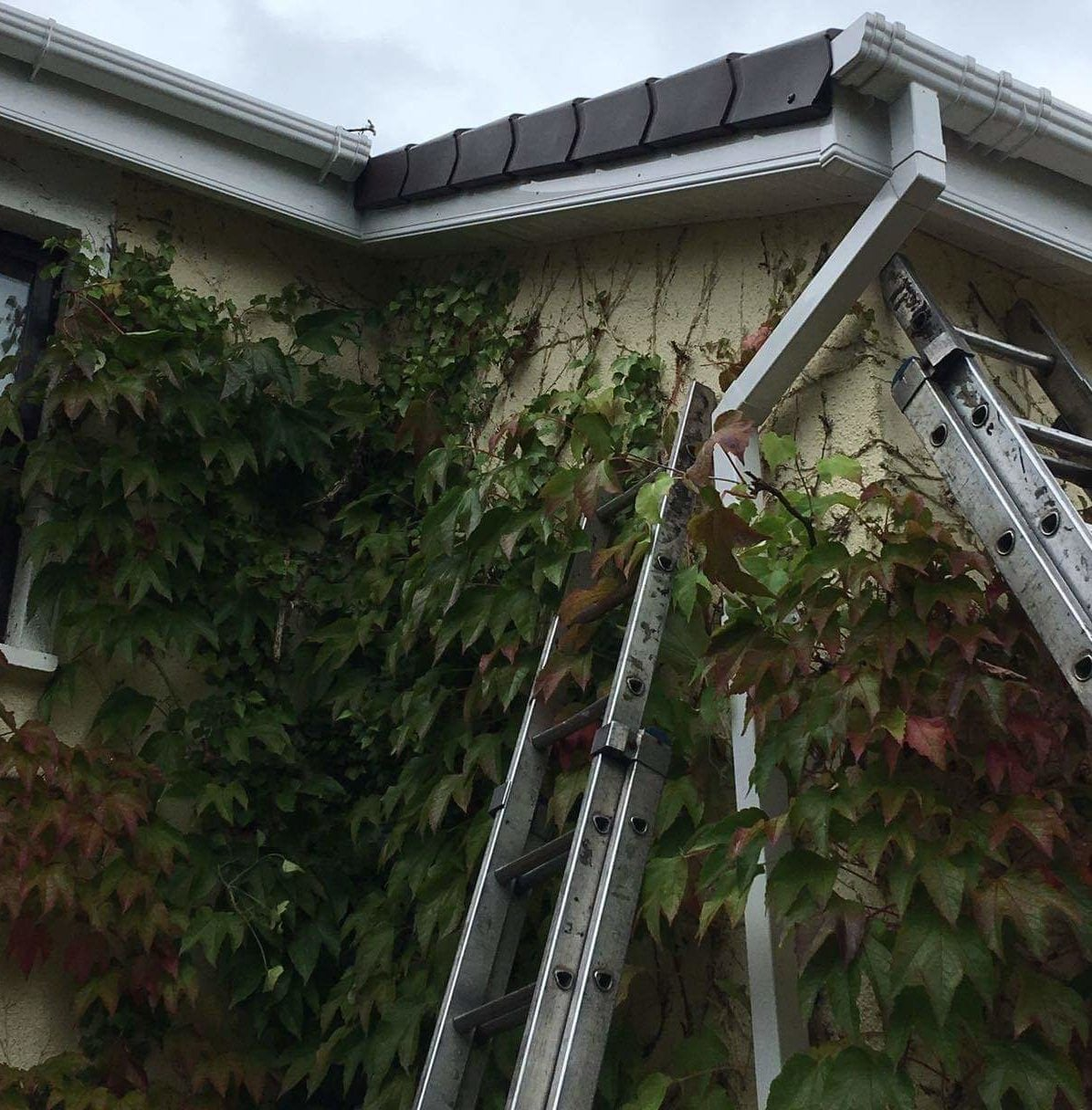 Gutters-and-Downpipe repGutters-and-Downpipe repGutters-and-Downpipes